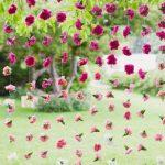 sfondo matrimonio cascata di fiori