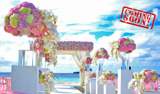 Real Weddings – coming soon