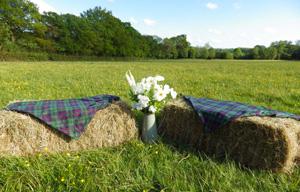 Sedie-matrimonio_balle-country_Matrimoni-con-laccento_Roberta-Patane