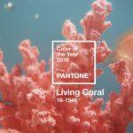 Colore dell'anno 2019: Living Coral