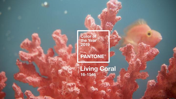 Colore-dellanno-2019_Living-coral_Roberta-Patane_Matrimoni-con-laccento