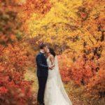 Matrimonio autunnale: amore e odio