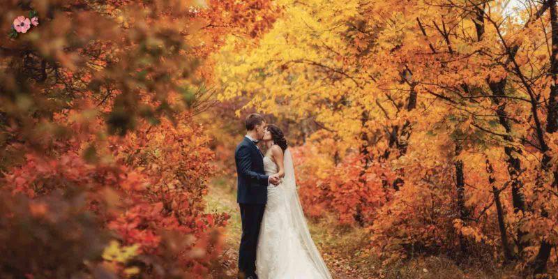 sposi nel bosco con i colori caldi autunnali